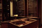 Nova Victoria (2008), Dominican Library, UGent, Belgium, 2008 (photo: Virginie Schreyen)