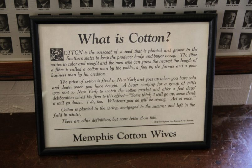 What is Cotton? Cotton Exchange, Memphis