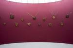 Taxonomic Trophies (2006 - ongoing), MuHKA, Antwerp, Belgium, 2012 (photo: Christine Clinckx)